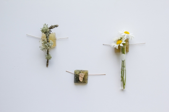 "Amanda Linn ""Impermanence Collection"""